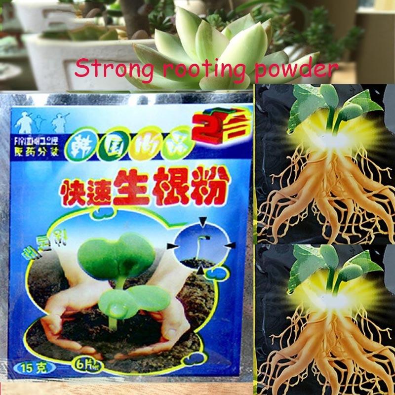Poudre de racines pour cultiver des plantes, 2 pièces, forte récupération de racines, aide à la germination, engrais, médecine du jardin