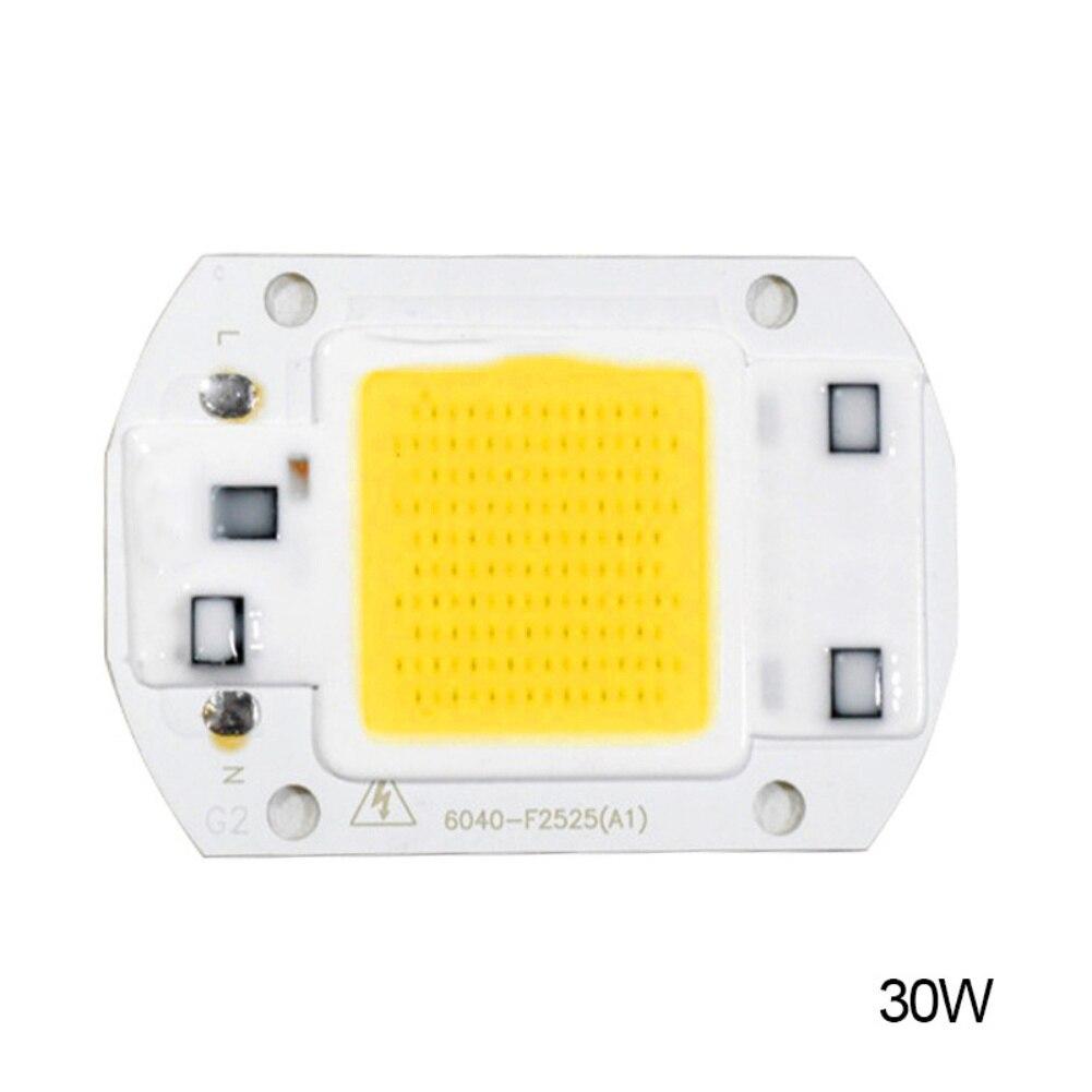 Yard Light 20W 30W 50W LED Chip 220V LED COB Bulb Chip Input IP65 Smart IC Fit For DIY LED Flood Light LED Modules High Quality
