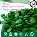 1000g 100% Orgánica Chlorella Pyrenoidosa Chlorella Vulgaris Tablet 250 mg x 4000 unids Roto Alta Calidad Rica de Clorofila, proteína