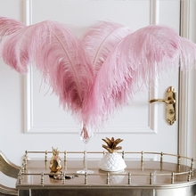 Real Ostrich Feather Wedding Party Decor Home Fiancee Sample Room