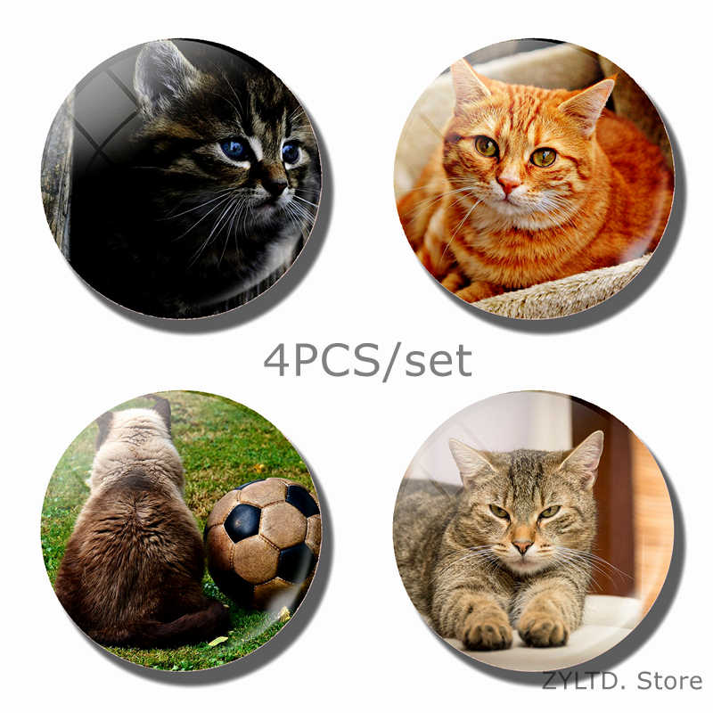 Cat Fridge Magnet Cute animal refrigerator magnets 4PCS/set Glass Cabochon Refrigerator decoration message stickers Home Decor