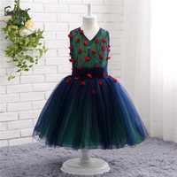 Sexy Flower Girl Dresses V Neck Sheer Back Tulle Sexy Children Images Pageant Ball Gown Wedding Party Gown Prom Dress Kids