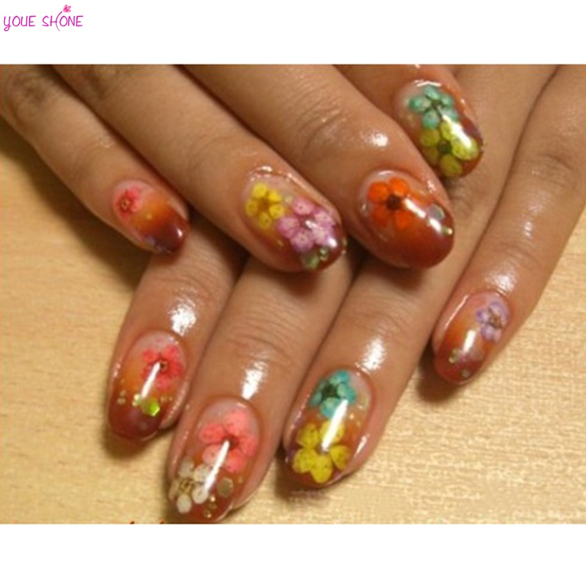 Youe Shone 12 Colors Real Dried Flower Nail Art Decorations With