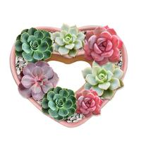 Love Heart Shaped Flower Pot Silicone Molds Home Decoration Succulent Concrete Planter Pallet Silicone Mold Random Color