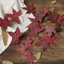 Natural Maple Leaf Dry Leaves Autumn Fall Foliage Red Original Color for Photography Props Photo Studio Accessories Decoration