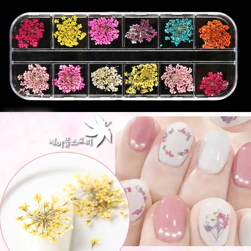 Top Quality 12 Colors Real Mixed Dried Flowers With Bottle Nail Art Decorations DIY Nail Art Tips Stickers Manicure Decor