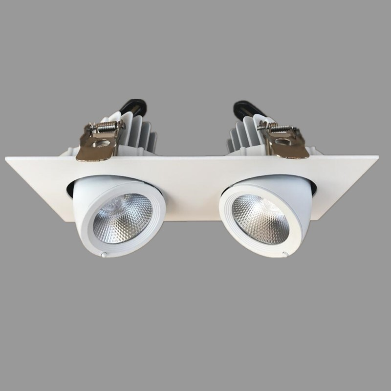 8PCS/Lot double Rotate 360 degrees 20W 30W LED Spot light LED ceiling lamp Recessed LED downlight COB 110V 220V home luminaire