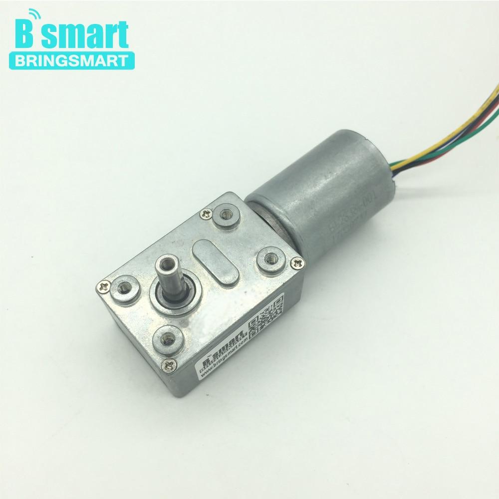 цена на Bringsmart JGY-2838 Brushless 12v DC Worm Gear Motor Reverse 24v micro Turbo-reducing Motor for robot DIY part Driver Self-lock