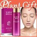 Blakish crisântemo leite essência creme facial creme de controle de óleo loção hidratante diminuir os poros