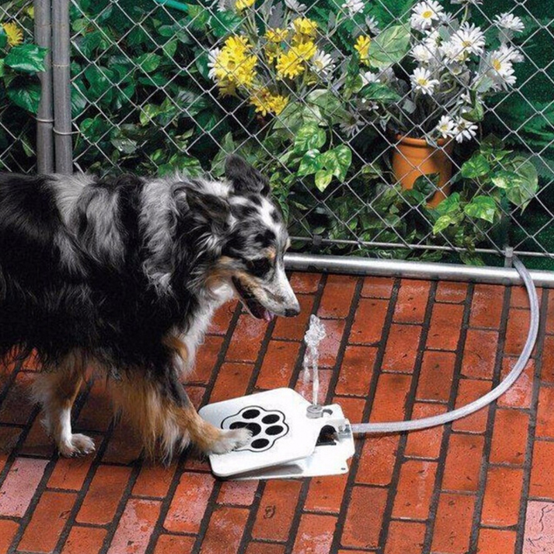 Outdoor Dog Cat Pet Drinking Water Fountain Doggie Dog Sprinkler Training Intellectual Tool Pet Water Drinking