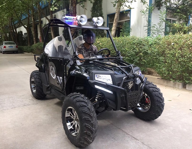Hot Sell UTV With Rated Displacement 400cc Driving 4*2