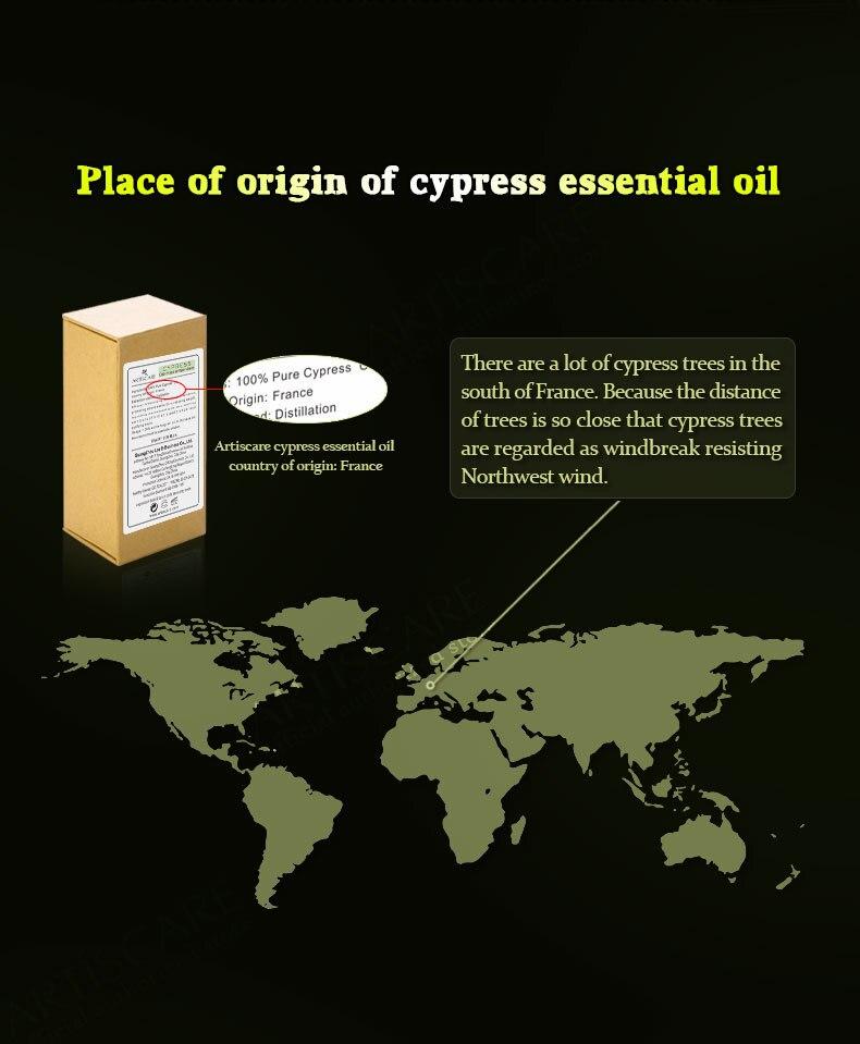 cypress_03