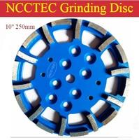 10'' Blastrac Diamond Grind Disc for EDCO Blastrac grinder | 250mm grinding plate for universal floor | 20 segments