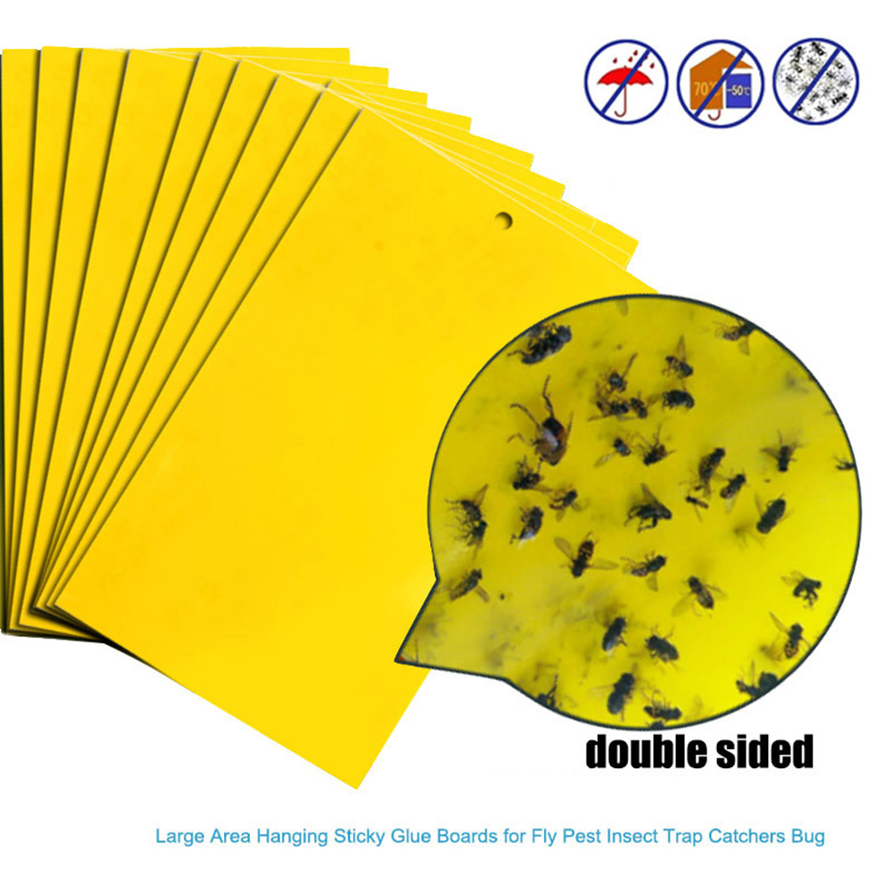 10PC Sticky Fly Traps Paper Eliminate Flies Insect Bug Home Glue Paper Catcher Trap Fly Bug Mosquito Killer Buzz Fly Trap Device