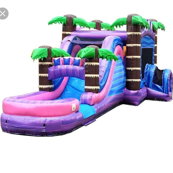PVC Inflatable bouncer castle with water slide with pool commercial inflatable water slide
