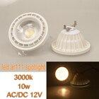AC/DC12v 10w 15w ar111 led spotlight white/warm white landscape light source ceiling light GU53 base