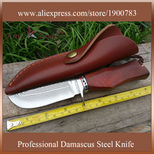 DT062 VG10 damascus knife G10 red ebony wood handle camping knife fixed hunting knife cs go knife