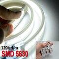 Hot Sale LED Strips 5630 Waterproof Kitchen Tiras Flexible Tape Light SMD 120led/m Line 220V Cold White