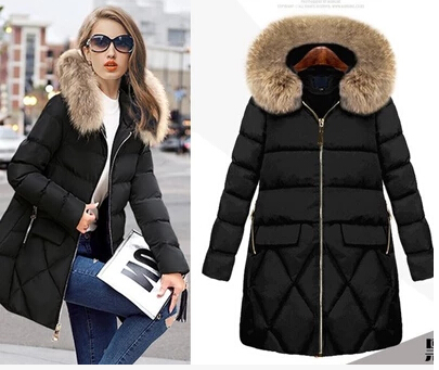 2017 Winter Jacket Women Coat Warm Detachable Lining Big Raccoon Fur Collar Hooded Winter Women Big