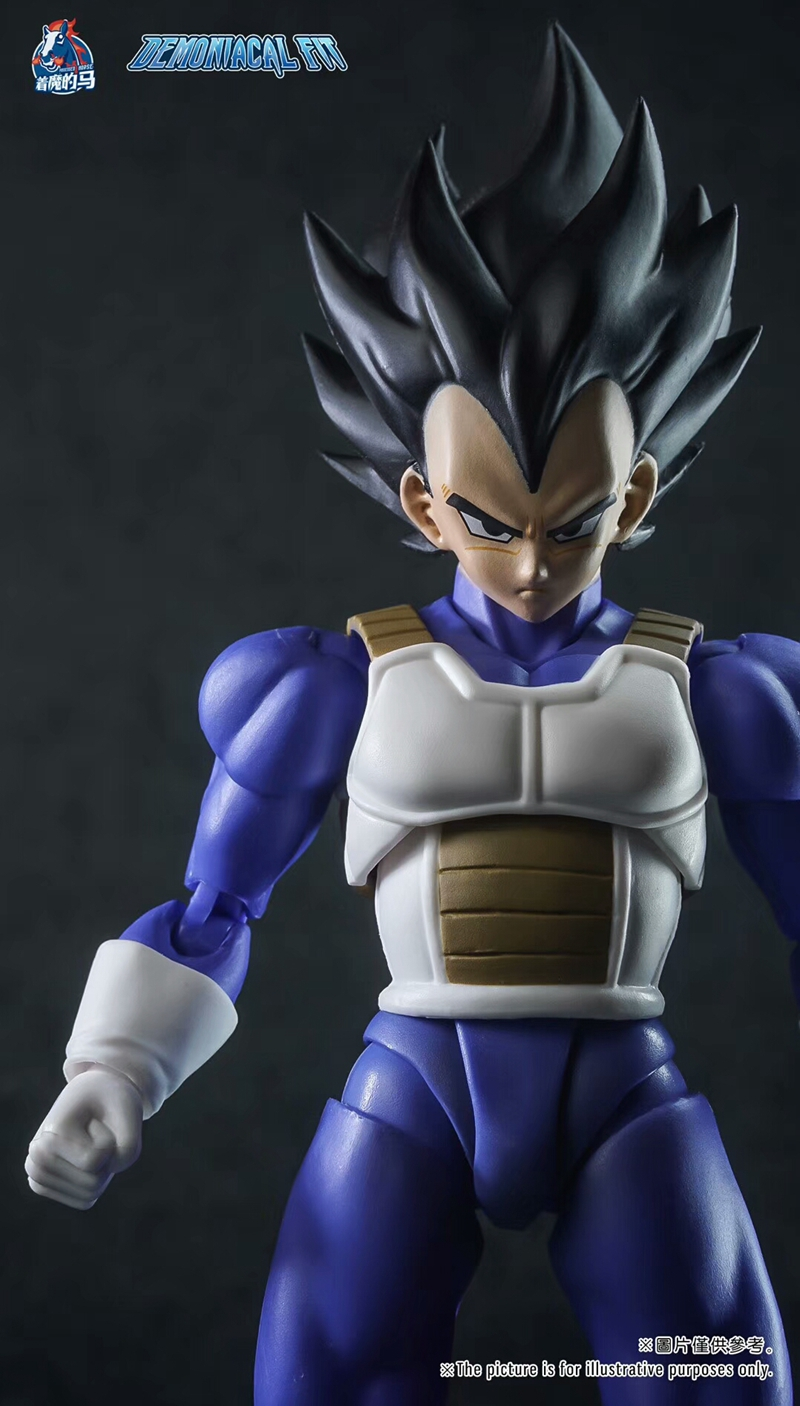 WSTXBD Demoniacal Suit for Dragon Ball Z DBZ shf SSJ Black Normal Vegeta Accessories Headsculpt Set Action Figure Toys Figurals
