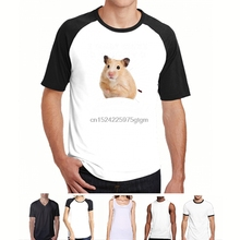 Buy cool for hamsters and get free shipping on AliExpress com
