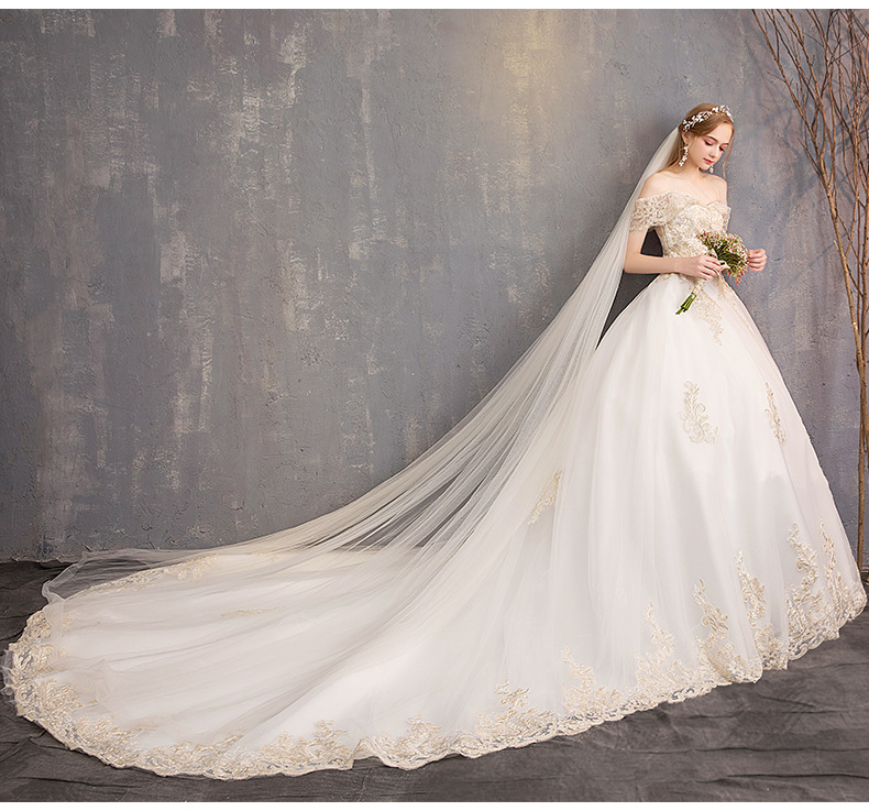Wedding Gowns 2019 With Long Trains New Bridal Dress Ball Gown Lace Tulle Strapless Swag Sleeve Cathedral Long Train Champagne