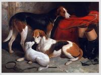 100%ハンド塗装犬動物油絵の具キャンバス上壁の装飾アートの絵画リビングルーム高品質