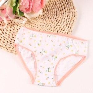 Image 5 - 20pcs/Lot 100% Cotton Panties Girls Kids Short Briefs Children Underwear Child  Shorts Underpants Girls Gifts Suit 1 12years