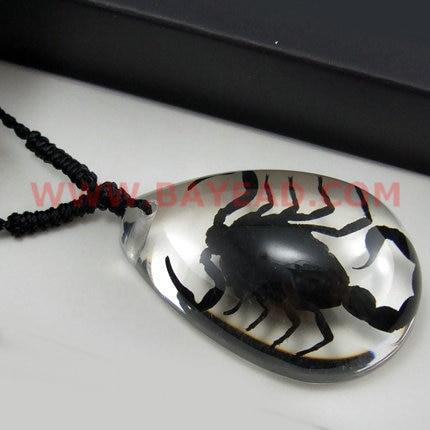Real Scorpion Black Resin Pendant