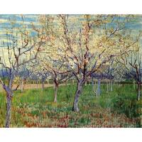 Landscapes art Orchard with Blossoming Apricot Trees by Vincent Van Gogh oil paintings canvas High quality hand painted