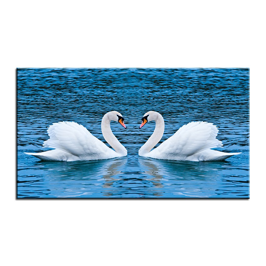 Large Size Printing Oil Painting Two Swans Wall Painting Decor Wall Art Picture For Living Room Painting No Frame Pictures Of Green Beans Painting Pictures Kidspicture Frames For Oil Paintings Aliexpress