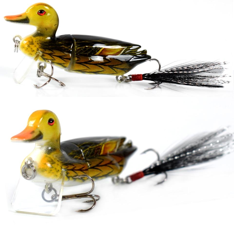 duck05a-1