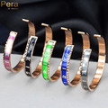 Fashion Famous Brand Rose Gold Plated Stainless Steel Jewelry Dial Design Speedometer Unisex Lovers Bangles For Men Z002