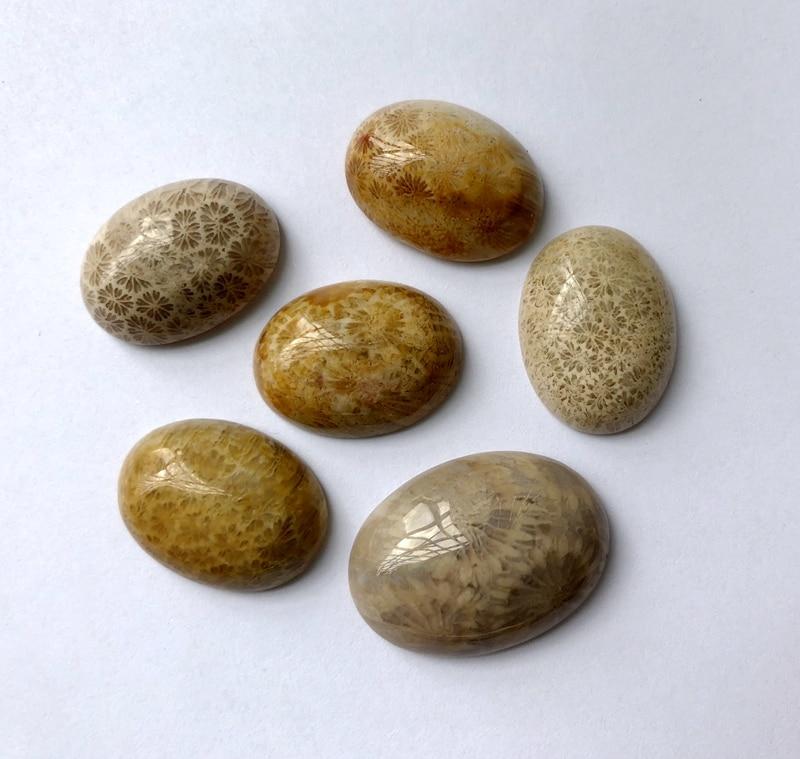 Натуральный Коралл Fossil Jaspe r Драгоценный Камень Кабошон 15*20 мм Овальный полукамень Кабошон 1 шт. камень кольцо лицо