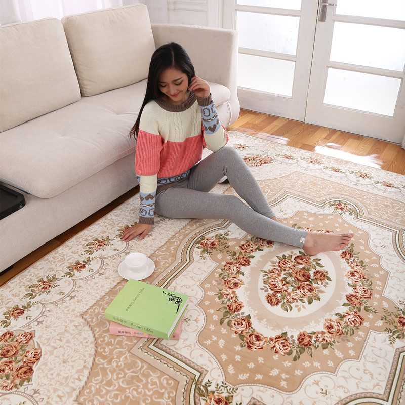 carpet size for living room 200x240cm large size carpet rugs and carpets area rug for 22158