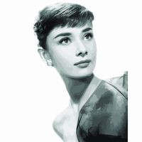 Audrey Hepburn Figure Framed Picture DIY Digital Oil Painting On Canvas 40 50 Painting By Numbers