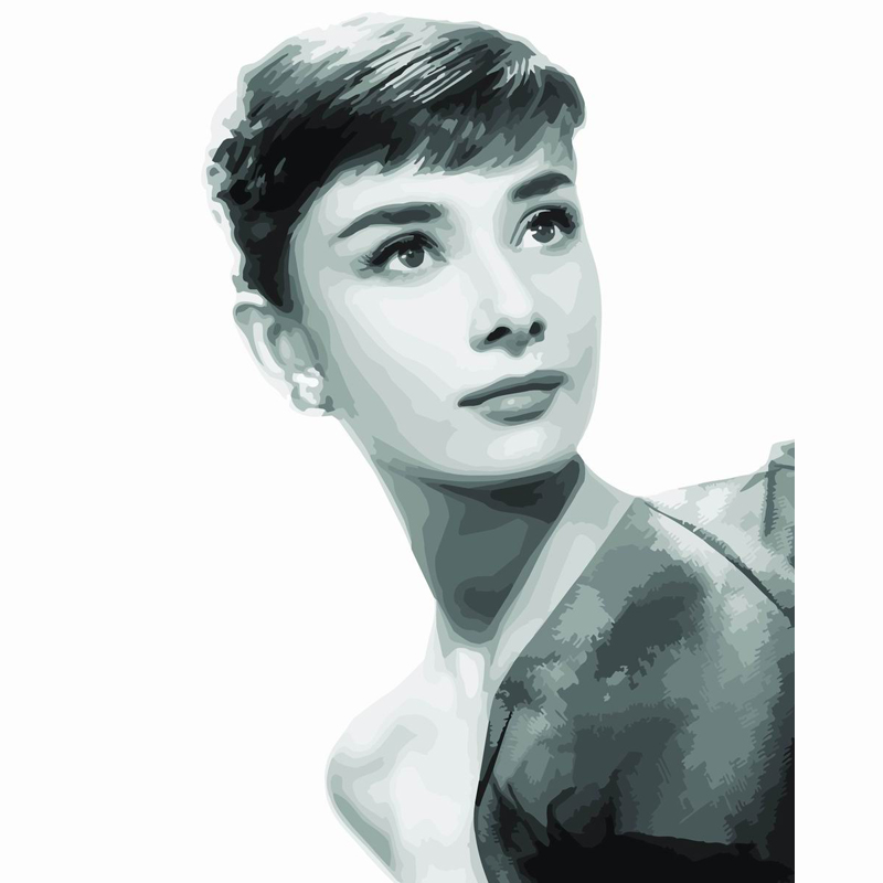 Audrey Hepburn figure framed picture DIY digital oil painting on canvas 40*50 painting by numbers quadros home decor wall art