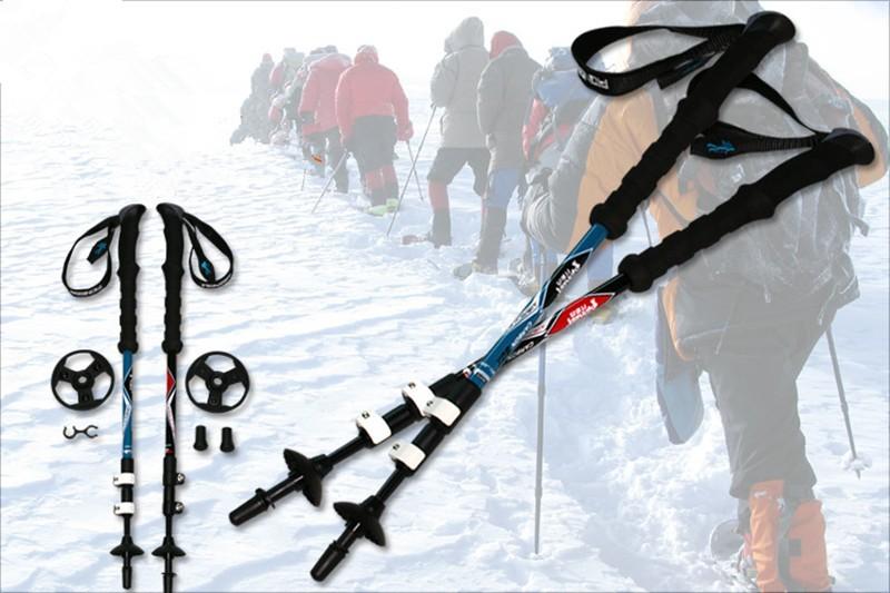 TP1011 00 nordic walking stick