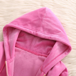 Image 3 - 2020 da marca das mulheres de veludo tecido agasalho calças ternos veludo terno mulher treino 2 peças hoodies e calças azul