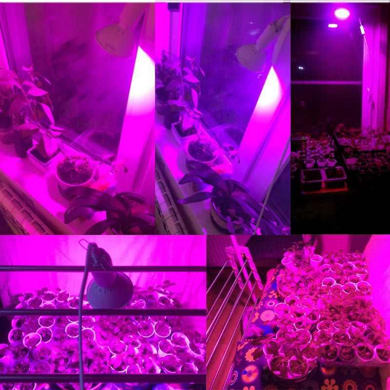 3-testa HA CONDOTTO LA Pianta del fiore Coltiva La Luce phyto Lampada in crescita per growbox Tenda Indoor Veg Semi hydro E27 rosso blu Lampadina del supporto Della Clip