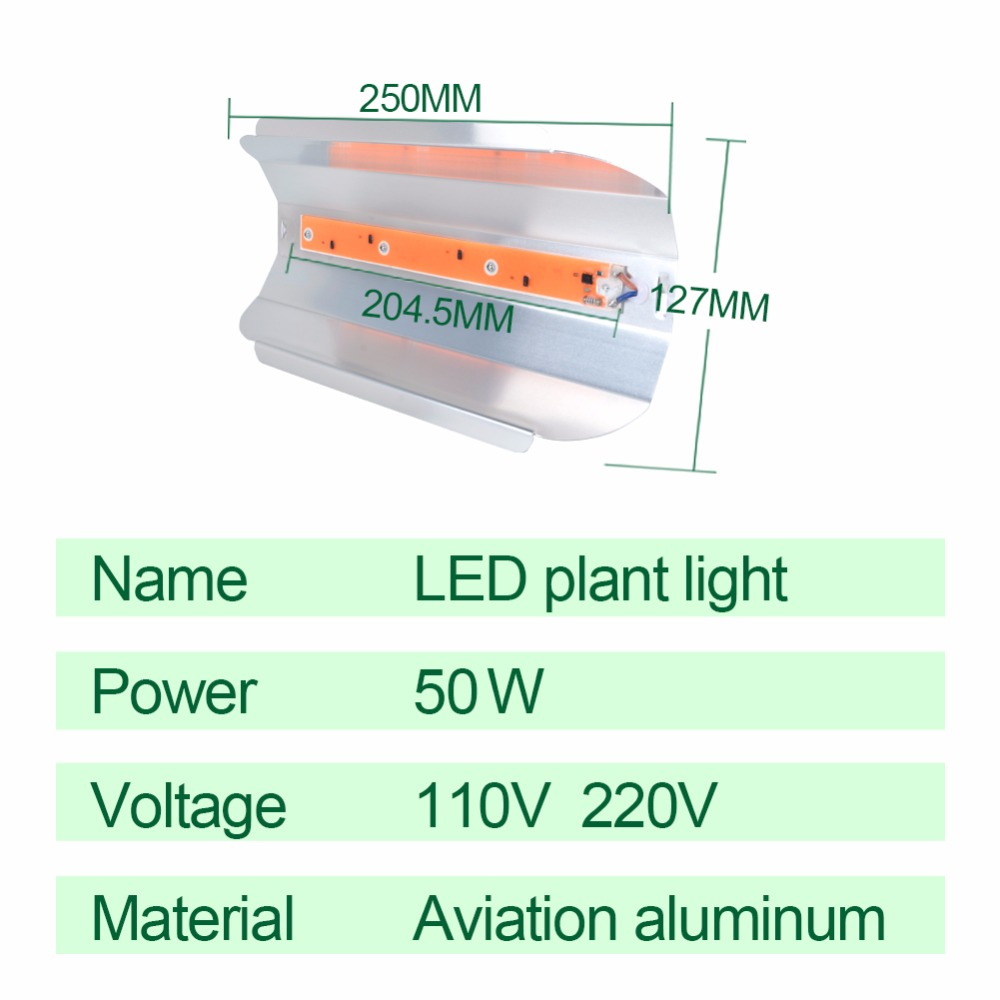 Full Spectrum 30w 50w Led Phyto Flood Lights High Power Cob Grow Fito Green Ecer Light Fitolampy Hydroponice Ac 110v 220v Ip67 Waterproof In From
