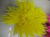 EMS Free Shipping 0.5KG Yellow Hackle Feather Trim 15 20cm 6 8 Rooster feather Trimming Cock Fringe For Costume Wholsale