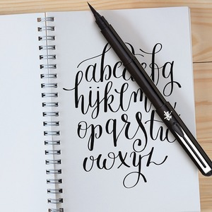 Image 3 - Pentel Arts Pocket Scientific Brush Pen, 분수 리필 가능 서예 브러쉬 2 개 포함 검정색 잉크 리필 GFKP3
