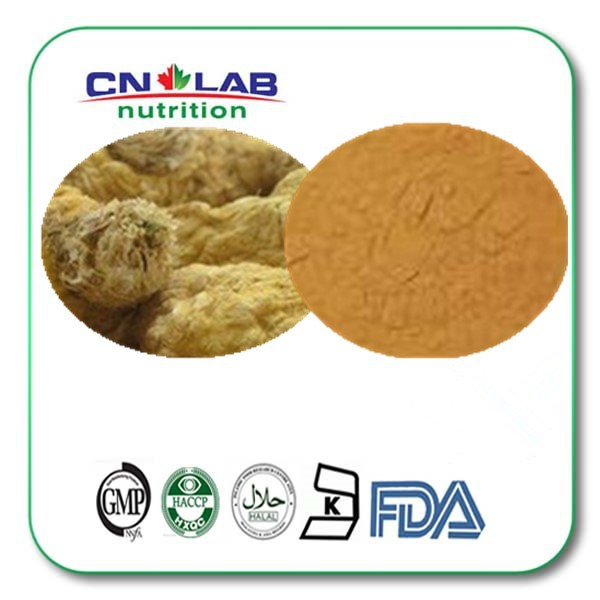 High Quality maca for women herbal supplements Hot Sale