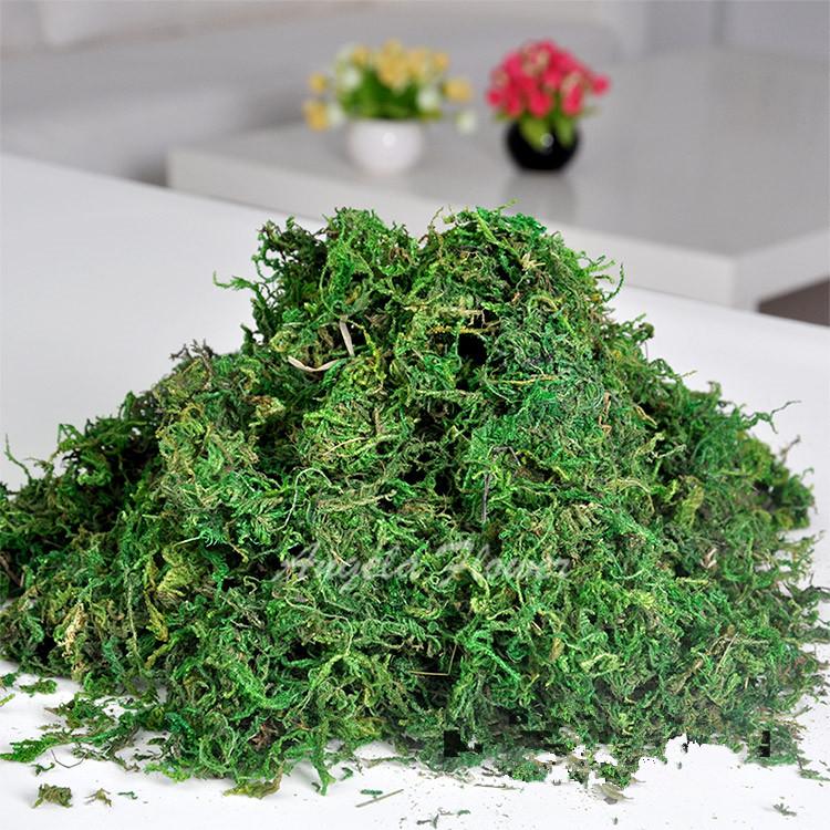 gbolsa mantener seco real musgo verde csped artificial plantas decorativas florero accesorios de