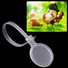 Poultry-Anklet-Ring Paw-Rings-Equipment Chicken-Hen-Chick-Goose Duck Identification Plastic