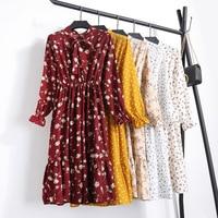 Women Printing Pleated Chiffon Dress 2018 Spring Summer New Hot Fashion Female Casual Long Sleeve O