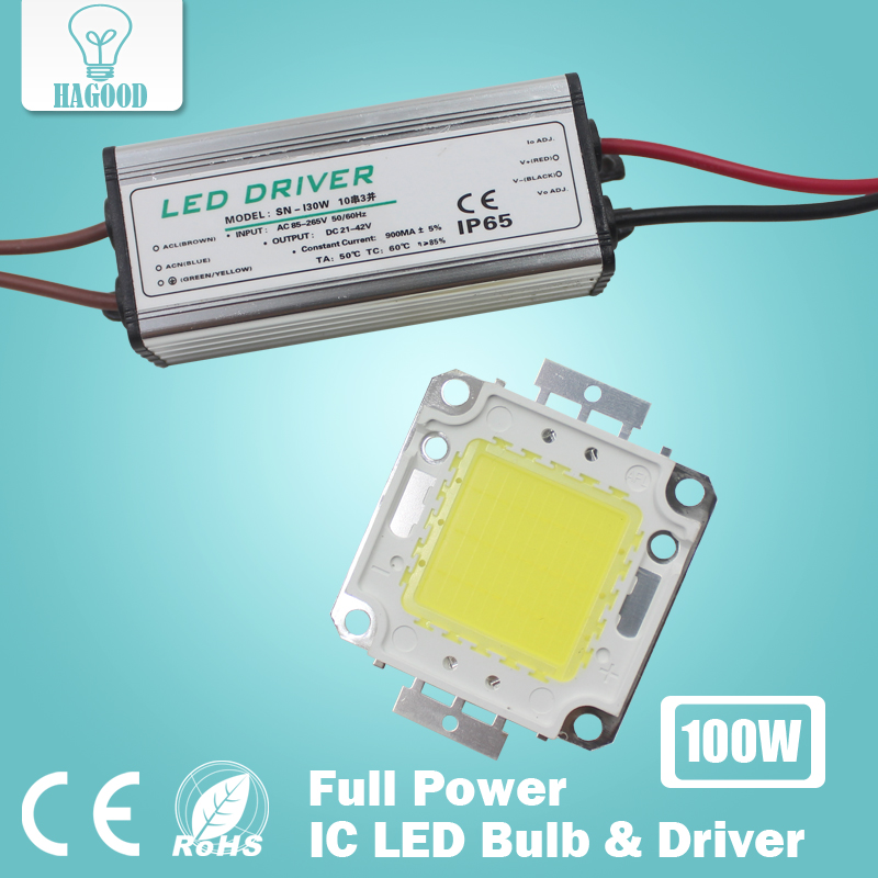 100x 10W 20W 30W 50W 100W High Power COB LED chip Bulb IC SMD Lamp Light flood light chip+POWER SUPPLY DRIVER 90-240V INPUT - Hagood Technology Co., Ltd store