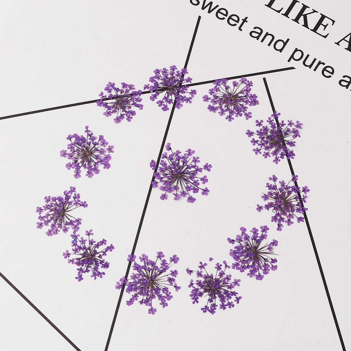 Light Purple Snowdrops DIY Crystal Epoxy Special Dried Flowers About 27x27mm-17x17mm-1 Package (12 Per Pack)