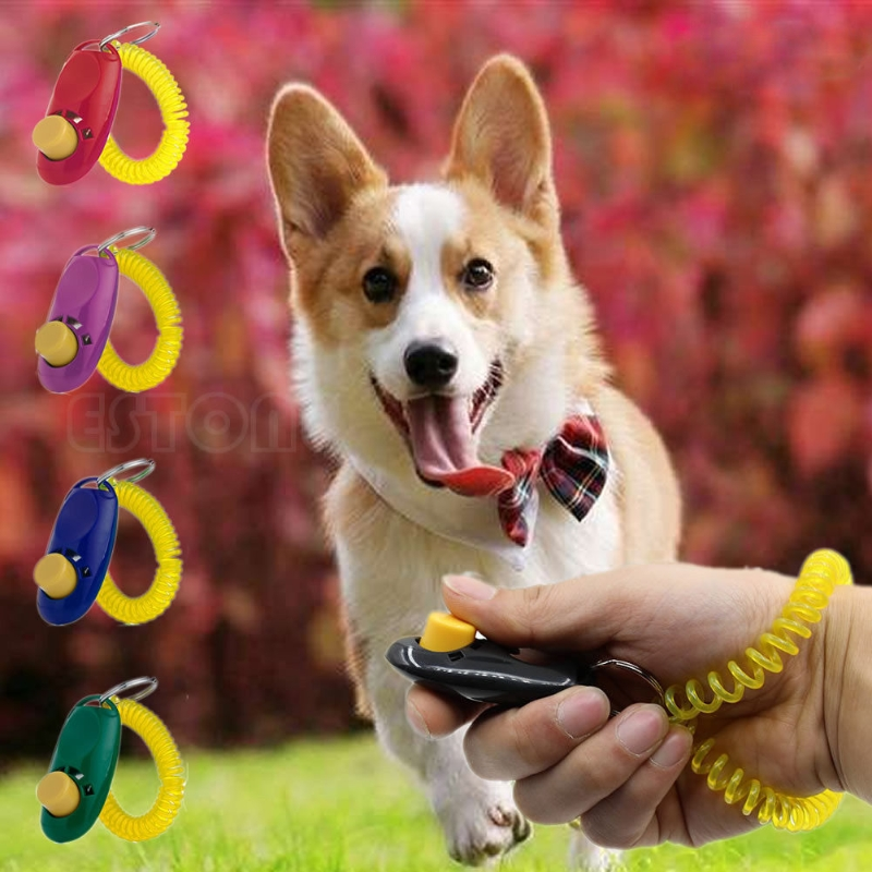 Pet Dog Training Puppy Trainer Teaching Aid Obedience Click Clicker&Wrist Strap
